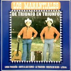 Los Manantiales: De Triunfo En Triunfo (Remastered)