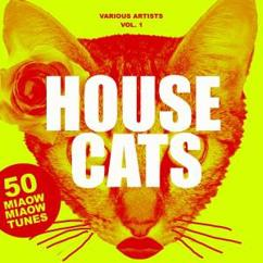 Various Artists: House Cats, Vol. 1 (50 Miaow Miaow Tunes)