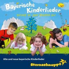 Sternschnuppe: Bayerische Kinderlieder: Alte und neue bayerische Kinderlieder