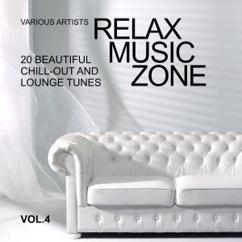 Various Artists: Relax Music Zone (20 Beautiful Chill-Out and Lounge Tunes), Vol. 4