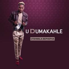 Udumakahle: uTshwala Bephepha