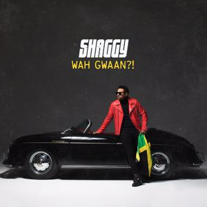 Shaggy, Rayvon: When She Loves Me (feat. Rayvon)