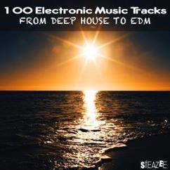 Various Artists: 100 Electronic Music Tracks from Deep House to EDM