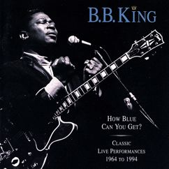 B.B. King: Chains And Things