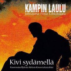 Kampin Laulu Chamber Choir & Timo Lehtovaara: Kivi sydämellä