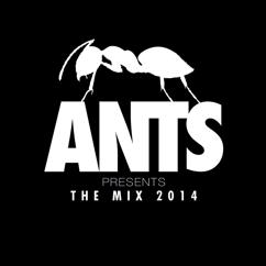 Various Artists: ANTS Presents The Mix 2014