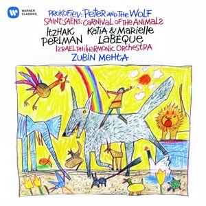 Itzhak Perlman: Itzhak Perlman - The Complete Warner Recordings 1980 - 2002 (Boxed SD Set)