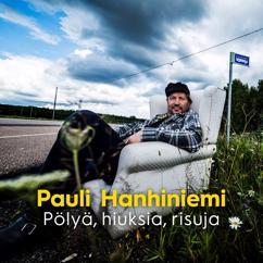 Pauli Hanhiniemi: Pölyä, Hiuksia, Risuja