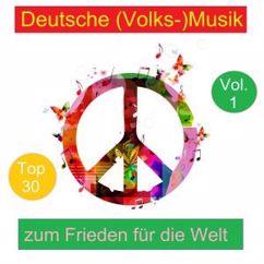 Various Artists: Top 30: Deutsche (Volks-)Musik zum Frieden für die Welt, Vol. 1