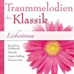 """Sandor Frigyes, Franz Liszt Chamber Orchestra: Serenade No. 13 in G Major, K. 525 """"Eine kleine Nachtmusik"""": II. Romanze"""