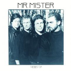 Mr. Mister: The Best Of