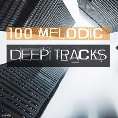 Various Artists: 100 Melodic Deep Tracks
