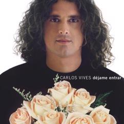 Carlos Vives: Dejame Entrar