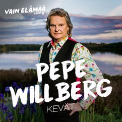 Pepe Willberg: Kevät (Vain elämää kausi 9)