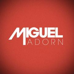 Miguel: Adorn