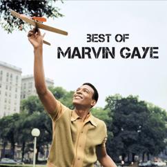 Marvin Gaye: Ain't That Peculiar
