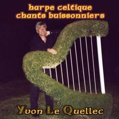 Yvon Le Quellec: Harpe celtique, chants buissonniers