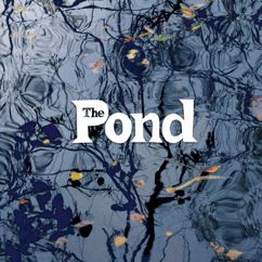 The Pond: The Pond