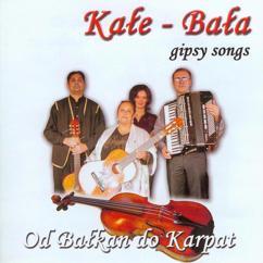 Kale - Bala: Od Balkan do Karpat