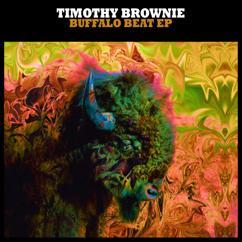 Timothy Brownie: El Elfo Perdido