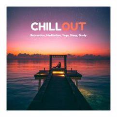 Various Artists: Chillout: Relaxation, Meditation, Yoga, Sleep, Study