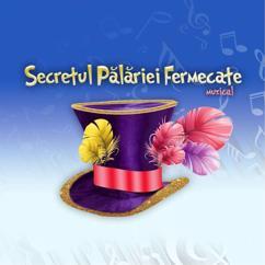 Secretul Pălăriei Fermecate: Secretul Pălăriei Fermecate (Original Musical Soundtrack)