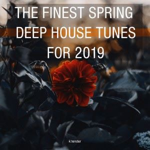 Various Artists: The Finest Deep House Tunes for 2019